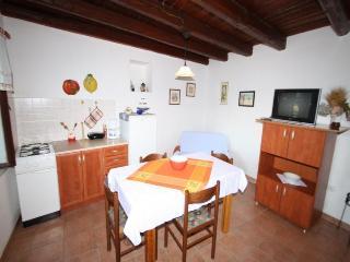 Susnjic Leko(2006-5267) - Funtana vacation rentals