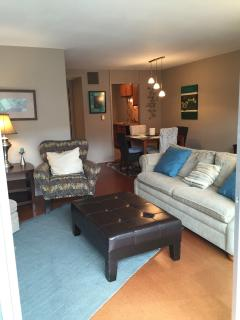 Living Area - Cherokee Rd Condo #2 - Louisville - rentals