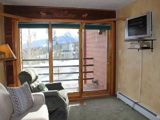 TR302A Cozy Condo w/Wifi, Clubhouse - Silverthorne vacation rentals