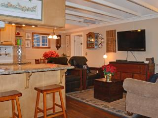 Romantic luxury cabin: spa, WiFi, dogs welcome - Big Bear Lake vacation rentals