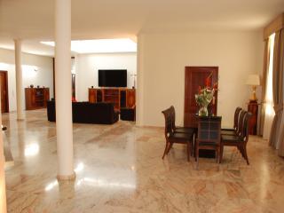 100 Julia Island Village Luxury Villa - Adeje vacation rentals