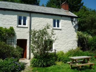 C18th Inglenook Cottage - Challacombe vacation rentals