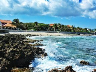 3 BR Ocean Front Paradise Parrot Tree Plantation - Roatan vacation rentals