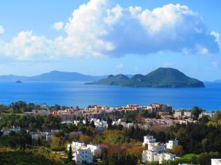 Lovely Villa with Internet Access and A/C - Kadikalesi vacation rentals