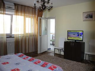 Studio Dorobanti,Bucharest city center! - Bucharest vacation rentals