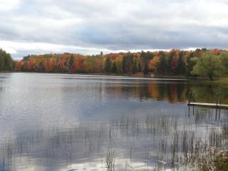 Peaceful Indian Lake - South Boardman vacation rentals