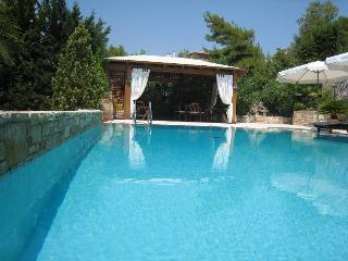 Amazing 3 Bdr Apartment in Vouliagmeni - Vouliagmeni vacation rentals