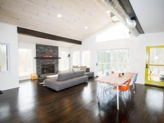 Brand New Modern Home in Catskills - Narrowsburg vacation rentals