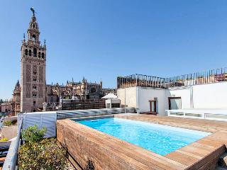 Fantastic 1BR Apartment! Swimming Pool. WIFI - Seville vacation rentals