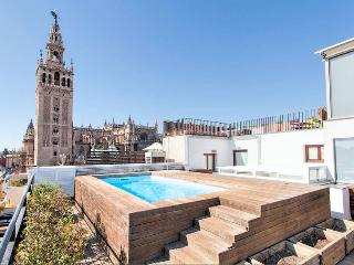 Unique Luxury Apart. Swimming pool! - Seville vacation rentals