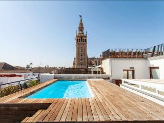 Great Loft with Swiming pool - Seville vacation rentals