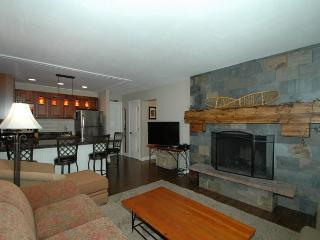 Very comfortable and cozy fully remodeled 1 bedroom with 1.5 bathrooms. - Winter Park vacation rentals