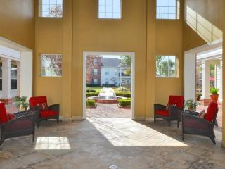 Beautiful 2BDR/2Bath condo in The Woodlands #917 - Conroe vacation rentals