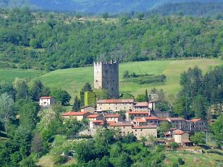 Holiday cottage in a corner of hidden Tuscany - Stia vacation rentals