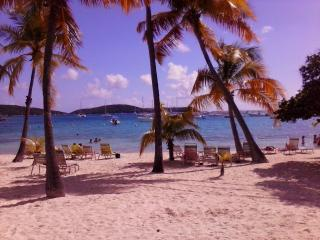 Cowpet Bay Beachside Condo 2BR - Saint Thomas vacation rentals