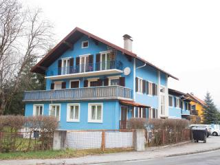 Lovely Condo with Television and Central Heating - Spittal an der Drau vacation rentals