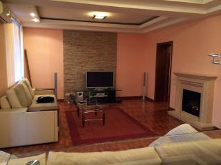 2 room apartment with Kreshcatik view - Kiev vacation rentals