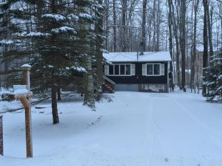 15 mins. to Skiing! Clean, Tranquil Lake Cottage - Pocono Lake vacation rentals