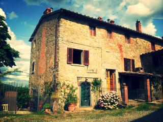 Chianti house, Florence, Jacuzzi, Tuscany up to 6p - Gaiole in Chianti vacation rentals
