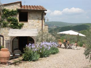 Perfect 2 bedroom Barn in Tavarnelle Val di Pesa - Tavarnelle Val di Pesa vacation rentals