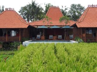 Bright 4 bedroom Villa in Sayan with Deck - Sayan vacation rentals