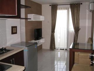 Unique and comfortable apartment in the downtown. - Jakarta vacation rentals