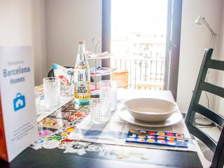 Large Boutique Apartment - Barcelona vacation rentals