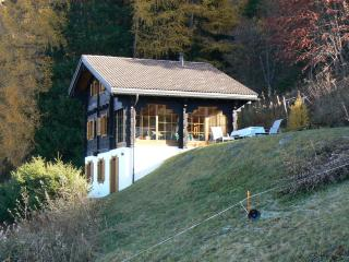 Superb location, privacy, sunny, in quiet and natural setting, panoramic views - Nendaz vacation rentals