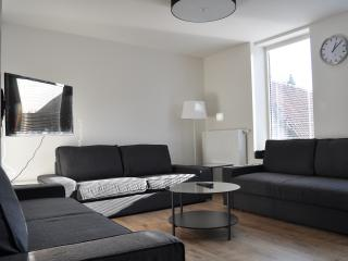 RAAMHOF: space/light/highcomfort/quiet - Ghent vacation rentals