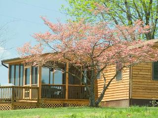 Beautiful Cottage with Deck and Internet Access - Charlottesville vacation rentals