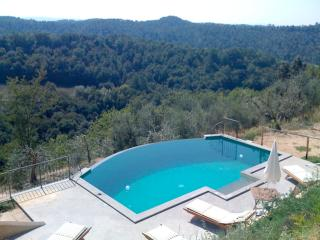 Villa Monterosoli private garden and pool secluded - Palaia vacation rentals