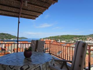 Apartment sea view terrase - Vela Luka vacation rentals