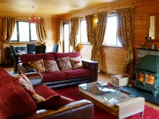 Romantic 1 bedroom Brithdir Cabin with Deck - Brithdir vacation rentals