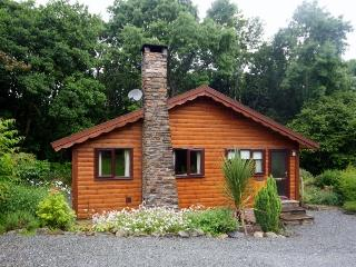 2 bedroom Cabin with Internet Access in Brithdir - Brithdir vacation rentals