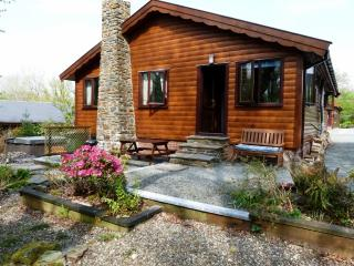 2 bedroom Cabin with Satellite Or Cable TV in Brithdir - Brithdir vacation rentals