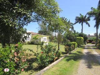 Sanora near Dunns River and Dolphin Cove - Ocho Rios vacation rentals