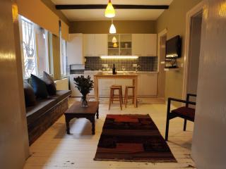 Warm and stylish Cihangir flat - Istanbul vacation rentals