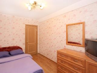 Lovely apartment by the park - Russia vacation rentals