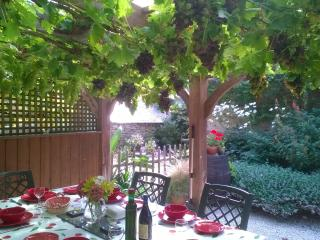 La Vigne with own heated pool and private garden - Quistinic vacation rentals