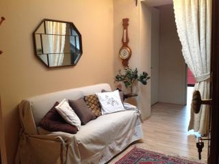 al 19 - Turin vacation rentals