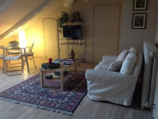 Cozy 1 bedroom Turin Penthouse with Internet Access - Turin vacation rentals