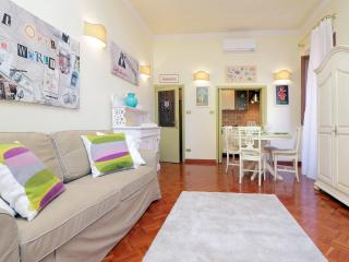 Luxury  Terry's house SAN PIETRO  last minute! - Rome vacation rentals