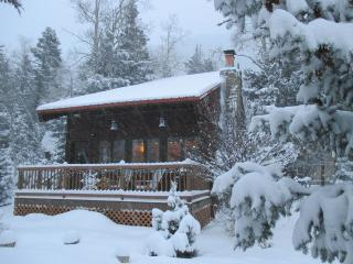 Cozy Taos Ski Valley Family Cabin - Taos Ski Valley vacation rentals