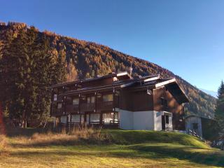 Studio with garden in Argentiere, Chamonix - Argentiere vacation rentals