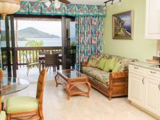 Two Bedroom Villa at Sapphire Beach Resort - Saint Thomas vacation rentals
