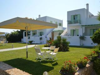 Lovely apartments complex in Skyros - Skyros Town vacation rentals