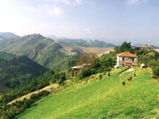 Ca Agostino B+B, camera NOBLESSE - Sassocorvaro vacation rentals