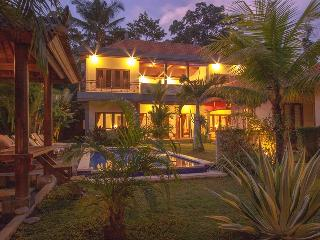 Nice Villa with Internet Access and A/C - Lodtunduh vacation rentals