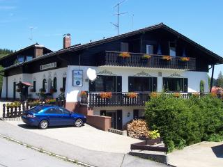 Comfortable 1 bedroom Bed and Breakfast in Bayerisch Eisenstein - Bayerisch Eisenstein vacation rentals
