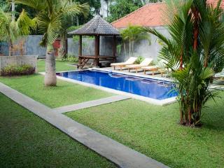 Hot Listing 4bd Pukakoo Villa Ubud Bali - Lodtunduh vacation rentals